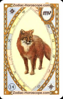The fox, monthly Love and Health horoscope January Cancer