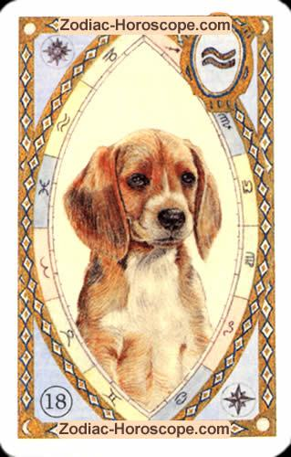 The dog Partnership love horoscope