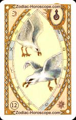 The birds astrological Lenormand Tarot